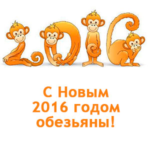 С Новым 2016 годом обезьяны!